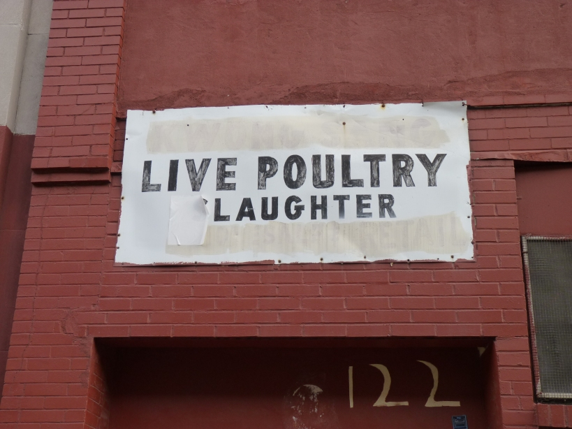 LIVEPOULTRYLAUGHTER