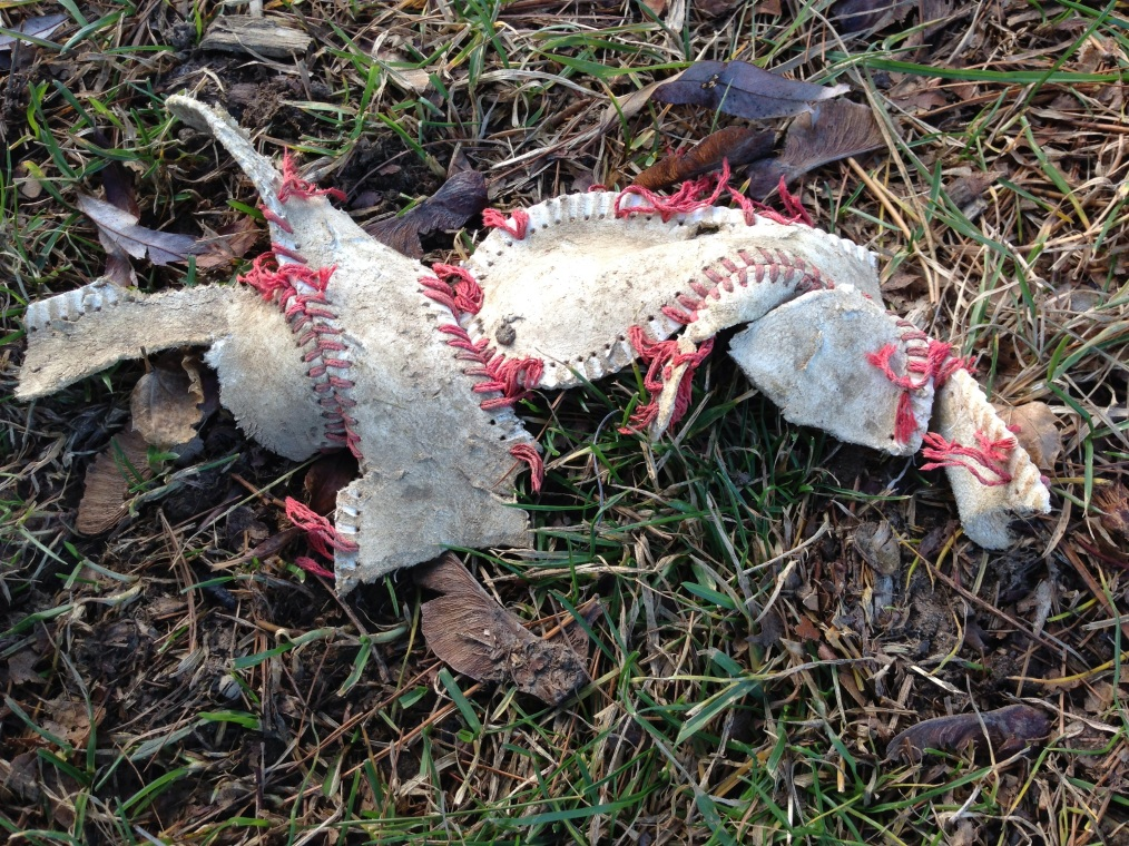 BASEBALL DEAD BIRD